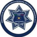 logo_DSPM